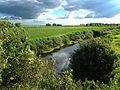 Jegrička, park prirode, Zmajevo 14.jpg