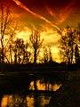 Jekerdal in vuur en vlam - panoramio.jpg