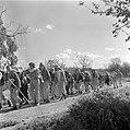 Jeugd die van kibboets naar kibboets trekt om het land te leren kennen en te hel, Bestanddeelnr 255-0462.jpg