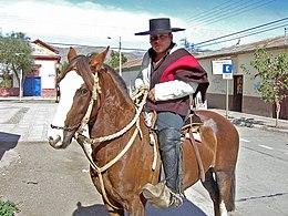 Chileens Paard Wikipedia