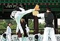 KOCIS Korea Taekwondo Namsan 27 (7628118522).jpg