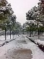 KUNSHAN city park - panoramio.jpg