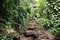 Kalalau trail 2011 1.JPG