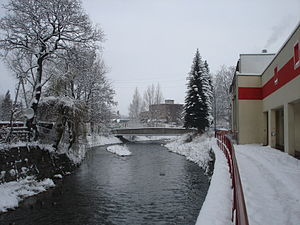 Bóbr - Bóbr in Kamienna Góra