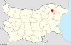 Kaolinovo Municipality within Bulgaria and Shumen Province.