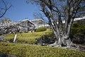 Kofu Castle 201904p.jpg