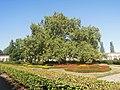 Kroměříž, Květná zahrada (18).jpg
