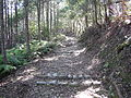 Kumano Kodo kogumotorigoe World heritage24.JPG