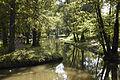 Kuzminki park 19.08.2012 4.jpg