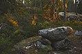 Kylmäkorvenkallion uhripöydät Vasaraisissa 05.jpg
