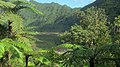 La Réunion Grand Etang1.jpg