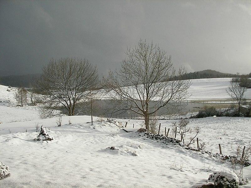 La gouille en hivers