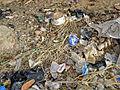La question des déchets à Agnam-Goly.JPG
