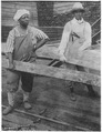 Labor. (African-American) women at work in lumber yards. (African-American) women, dressed in men's clothes, lifting... - NARA - 522867.tif