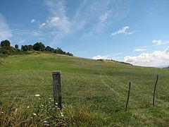 Landscape-IMG 7147.JPG
