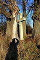 Landschaftsschutzgebiet Röderhofer Teiche und Egenstedter Forst - Wegekreuz am Nordwest-Rand im Herbst (18).jpg