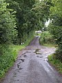 Lane at Pickney - geograph.org.uk - 1407679.jpg
