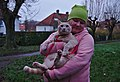 Larry the cat in a harness being held by a pink human in Auderghem, Belgium.jpg