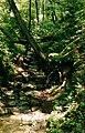Leipalingio parko upelis.jpg