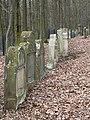 Limbach Judenfriedhof 3300453.jpg