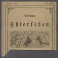 Limnaea stagnalis - - Print - Iconographia Zoologica - Special Collections University of Amsterdam - UBAINV0274 088 04 0003.tif