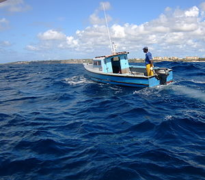 Fishing industry in the Caribbean - Line fishing on Cobblers Reef