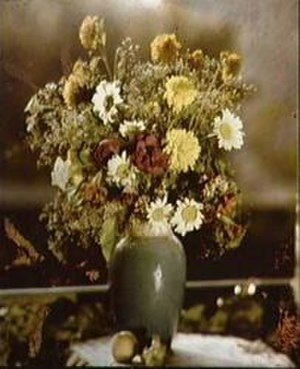 Gabriel Lippmann - A colour photograph made by Lippmann in the 1890s. It contains no pigments or dyes of any kind.