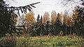 Lobnya, Moscow Oblast, Russia - panoramio (469).jpg