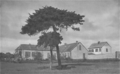 Longwood Old House 1913.png