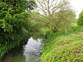 Looking upstream on the River Stour - geograph.org.uk - 1269398.jpg