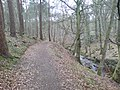 Lord Butes Walk - geograph.org.uk - 753074.jpg