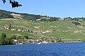 Lutry - panoramio (51).jpg