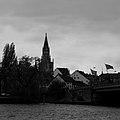 Münster (67560631).jpeg