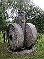 MBL Olsztynek - 5. Gniotownik nasion oleistych.jpg