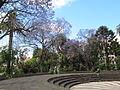 Madeira em Abril de 2011 IMG 1733 (5663189277).jpg