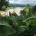 Mae Tan, Tha Song Yang District, Tak 63150, Thailand - panoramio (4).jpg
