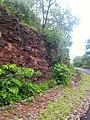 Majhgawan, Madhya Pradesh 485661, India - panoramio (11).jpg