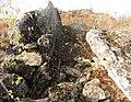 Malhesherbes Dolmen de Mailleton.jpg