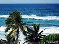 Manati, Puerto Rico - panoramio (2).jpg