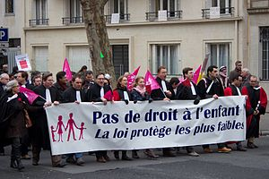 "Law 2013-404 - ""Manif pour tous"" rally against same-sex marriage, Paris, January 2013."