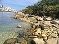 Manoel Island beach.jpg
