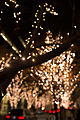 Marunouchi light decorated trees -1 (8239900666).jpg