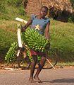 Matooke banana seller.JPG