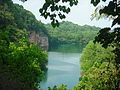 Mead's Quarry at Ijams Nature Center from Tharp Trace.JPG