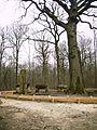 Menhir et faux dolmens en forêt de Meudon.JPG