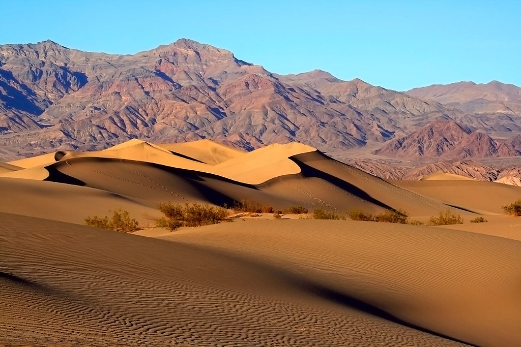 Les Mesquite Dunes (Litt: les dunes à Prosopis). Vallée de la mort, Californie. (États Unis d'Amérique). Photo de Brocken Inaglory