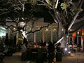 Miami Design District Brosia cafe at night.jpg