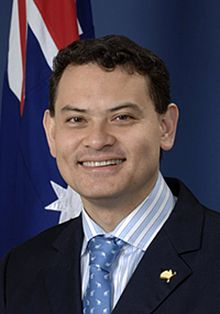 michael johnson australian politician wikipedia