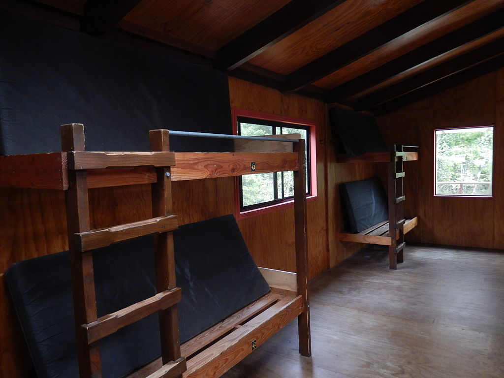 Build Bunk Beds For Honda Odyssey