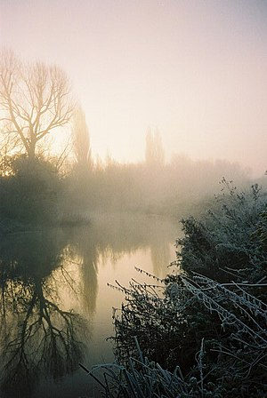 English: Misty dawn, River Loddon. The river s...